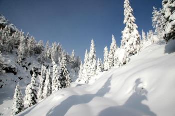 Paesaggio invernale sul Monte Zoncolan