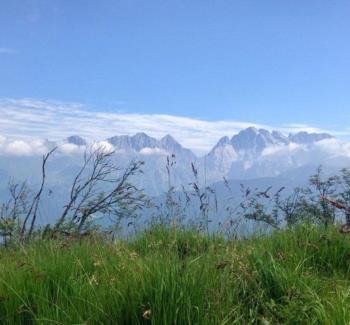 Monte Coglians